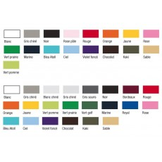 Polo homme coton piqué peigné 210 g couleur