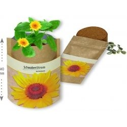 SACHET NATURE GRAINES TOURNESOL