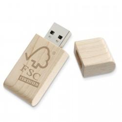 Clé USB Écolo