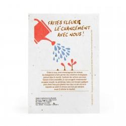 Carte en papier de graines Cocli A6