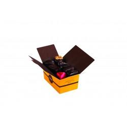 Assortiment de 18 pralines au chocolat noir 235 g